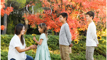 Autumn Maple Leaves Family Mini Session