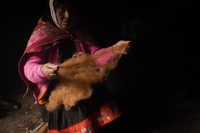 Spinner & alpaca-herder, Juana, prepares alpaca fibre at her home in Acopata, Peru, 4500 metres (15,000 feet) above sea level.