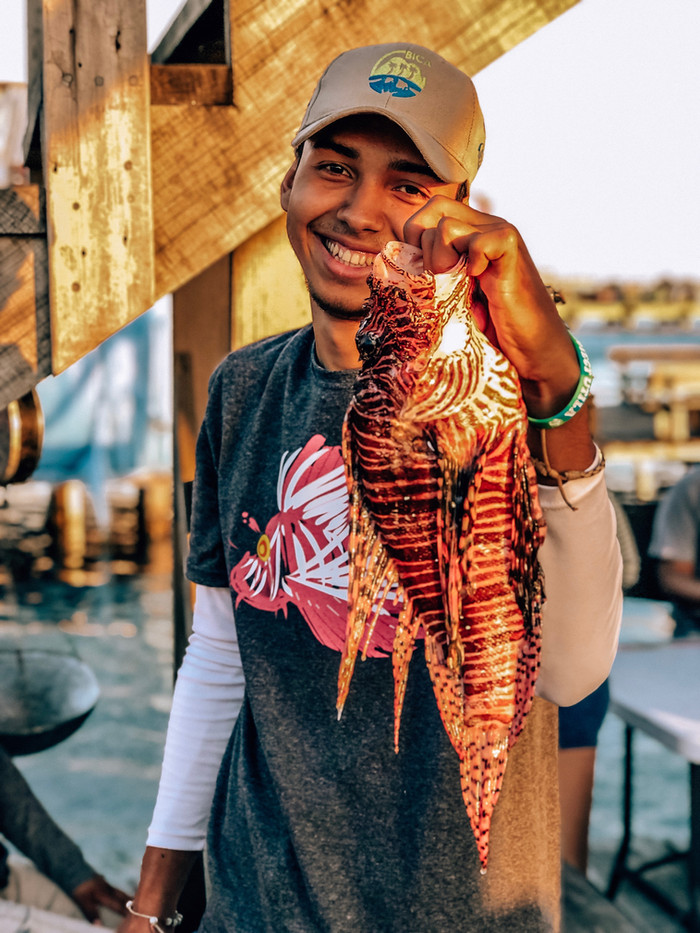 Lionfish about to be dissected for the XIII edition of the Utila Lionfish Derby.
