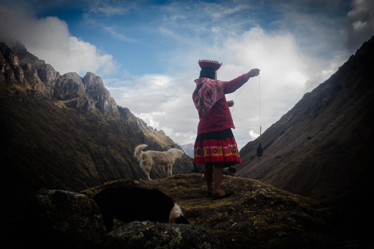 Lucia herding her alpacas and sheep while hand-spinning at the top of the mountain. Cancha Cancha, Peru.