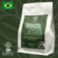 Brazilia Santos.jpg