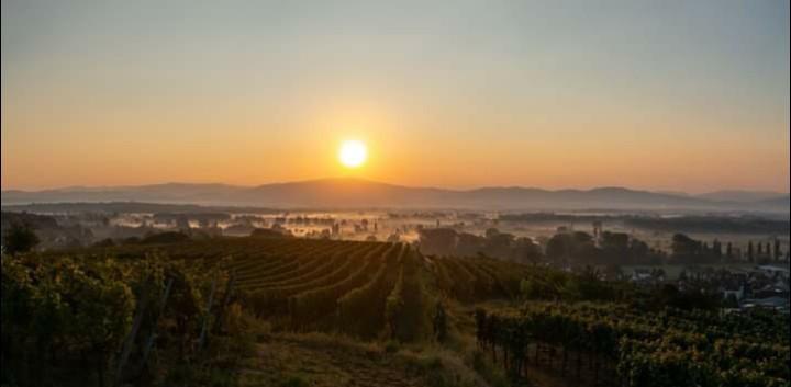 Sonnenaufgang aus unserem Grundstück
