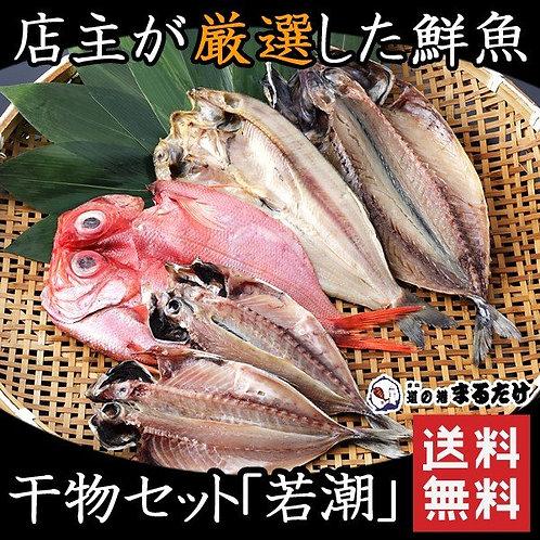 干物 詰め合わせ 5枚 干物セット 若潮 ギフト(送料無料)
