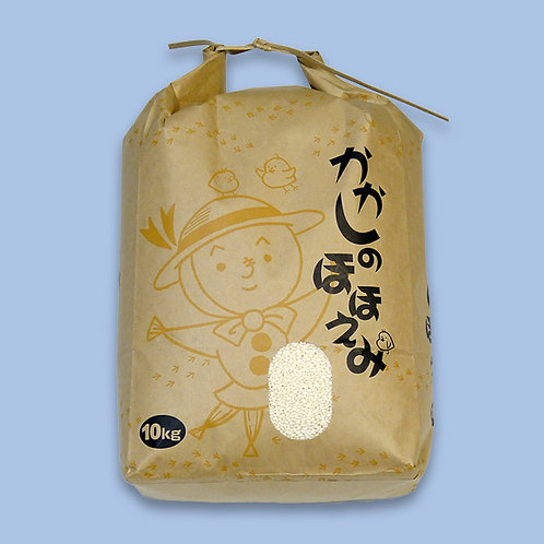 ヒメノモチ(白米)10kg (送料別)