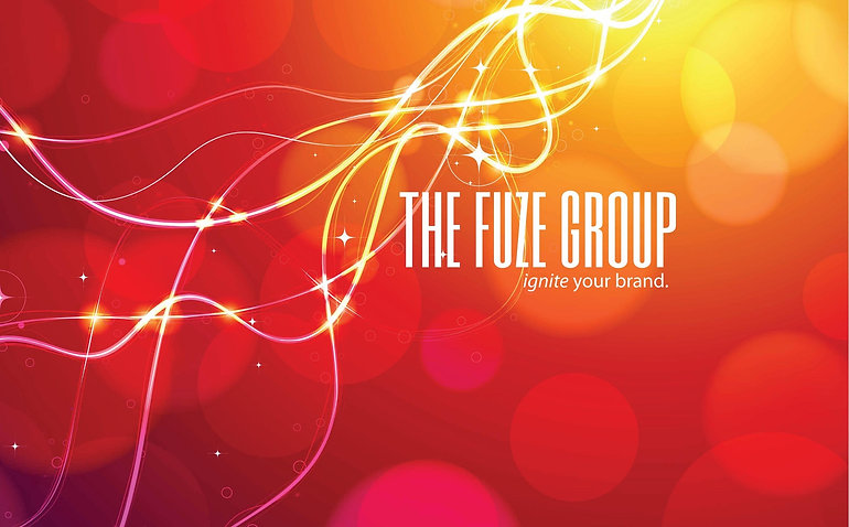 The Fuze Group Palatine Illinois