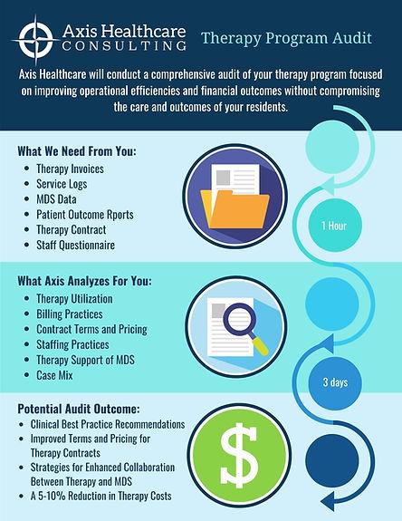 Therapy Program Audit.jpg