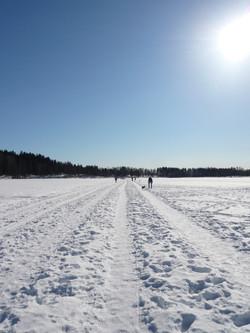 Outside the city - Sognsvann