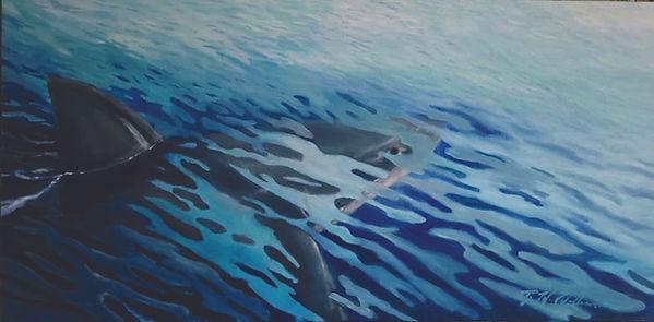 sharky shark.jpg