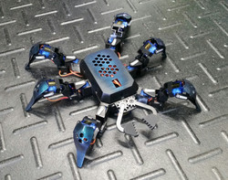 Robotic Spider/Hexapod