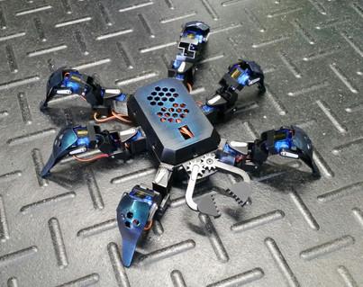 RoboticSpider.jpg