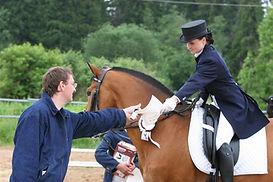 Конный спорт. Обучение. Кизимов, верховая езда, конный клуб, конно спортивный клуб, работа в рукак, конно спортивный, выездка, конкур, конный спорт, лошади, школа верховой езды, про лошадей, Totilas, Edward Gal, Grand Prix, Equestrian, dressage, work in hand, Kizimov