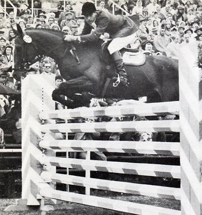 Конный спорт лошади выездка конкур Кизимов Спб