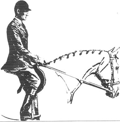 Кизимов, верховая езда, конный клуб, конно спортивный клуб, работа в рукак, конно спортивный, выездка, конкур, конный спорт, лошади, школа верховой езды, про лошадей, Totilas, Edward Gal, Grand Prix, Equestrian, dressage, КСК, Kizimov