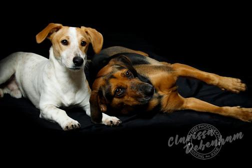 aa Zeus & Eva - Film Free Photography -