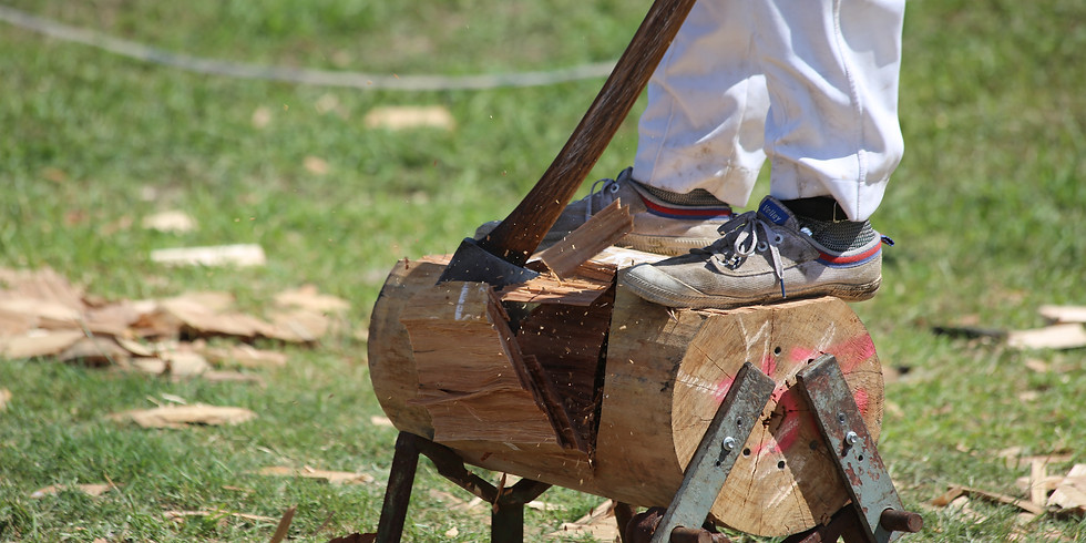 Example Woodchop (2)