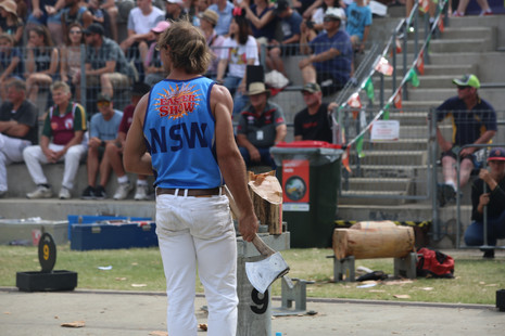 A NSW axeman reviews the field after finishing his block, Sydney Show 2018