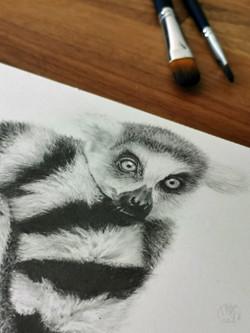Lemur A4