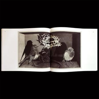 Le-cantique-des-oiseaux-5.jpg