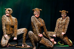 sarah jane jones raw leopard