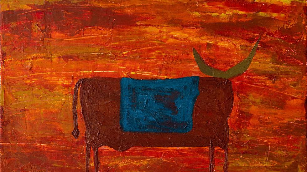 Wyoming Bull