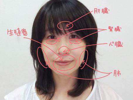 顔ヨガと内臓との関係
