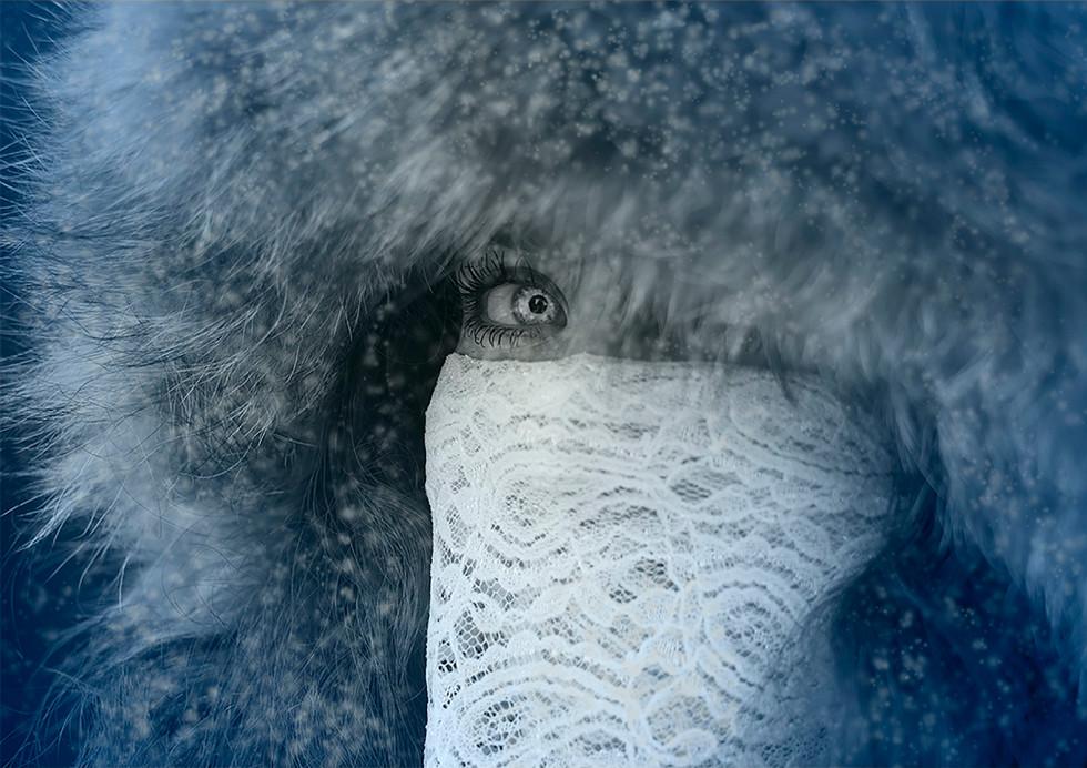 Winter copy.jpg