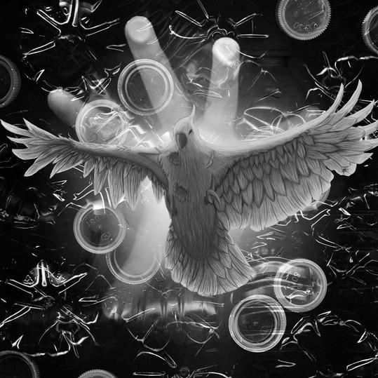 Plucked Bird.jpg