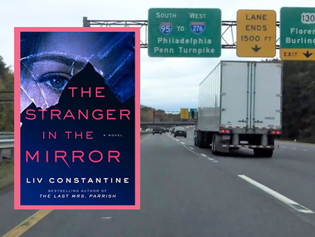 The Stranger in the Mirror - an exciting, twisty domestic thriller.