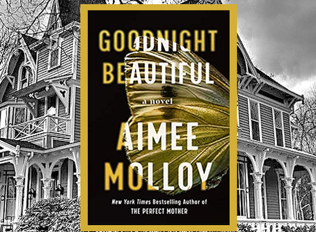 Goodnight Beautiful - highly entertaining thriller with great twists and turns you won't see coming.