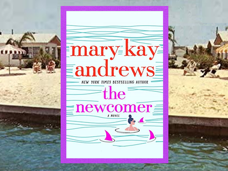 The Newcomer - an entertaining beach read with mystery and a little romance.