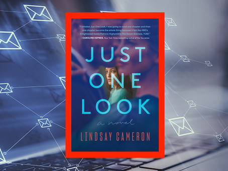 Just One Look - a woman's obsession takes a dark turn in this enjoyable thriller.
