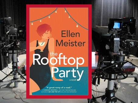 The Rooftop Party - an enjoyable mystery filled with lots of wit and humor.