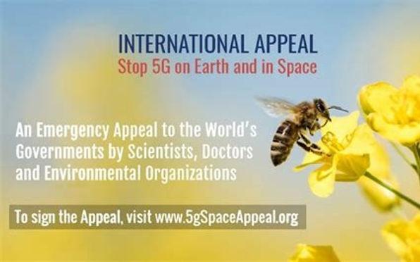 SPACE%20APPEAL%20PIC_edited.jpg