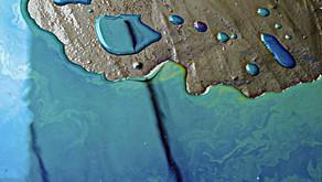كارثة بيئية كبيرة جداً في روسيا وبوتين يعلن حالة الكوارث البيئية.