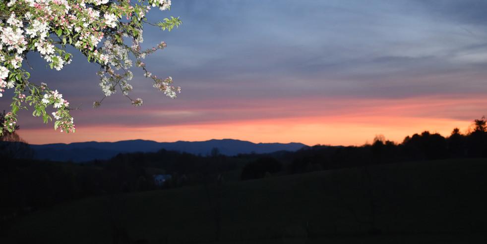 setting sun.jpg
