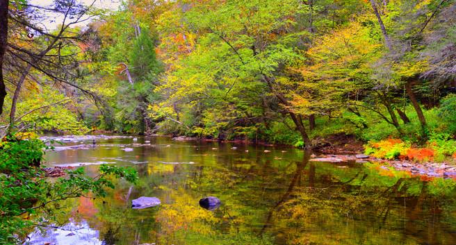 Overlook Trail Daddys Creek Fall 2020.jp