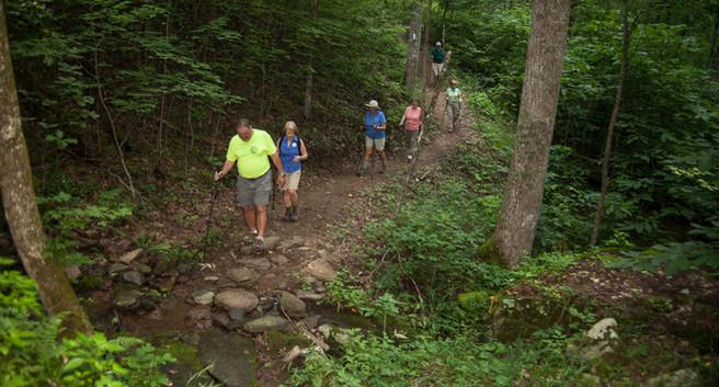 Hiking Group trail.jpg