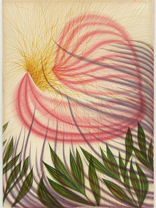 #3 The Flower of Helen Butler 1861