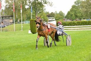Course Aarau - Vicky Crown - saison 2017