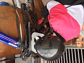 Préparaton chevaux de course - Ecurie Woiton
