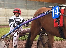 Courses de chevaux - IENA - Etienne et Vicky