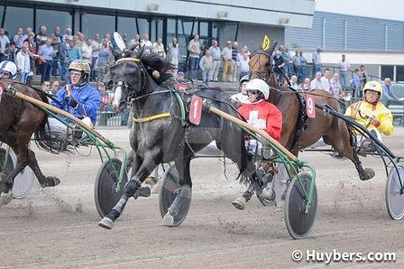 Etienne Massonnet - championnat d'Europe - 2016 - Course de chevaux