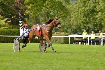 Victoire course de chevaux - Aarau - Saison 2017