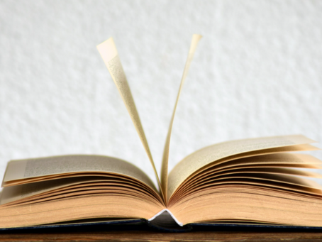 The best opening lines in books