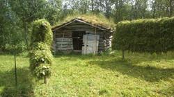 Hesjer ved Litjlaua