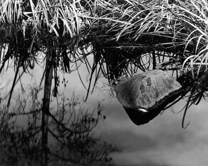 H0217 Rock&ReflectionsDawsonCreek.jpg