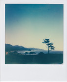 impossible polaroid_0337.jpg