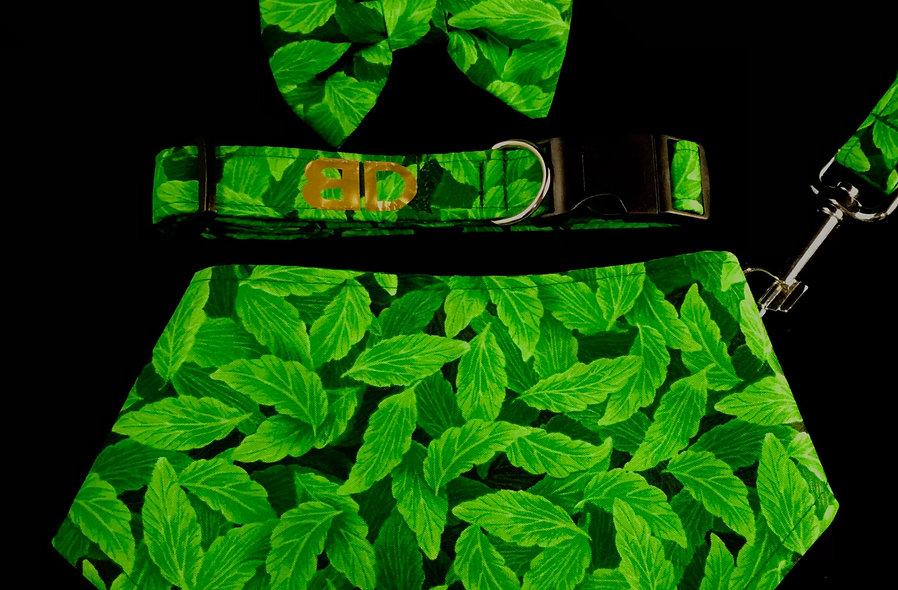 Spring leaf Collar
