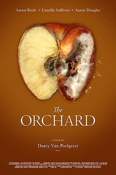 The Orchard.jpg