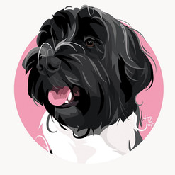 Contemporary Circle Pet Portrait